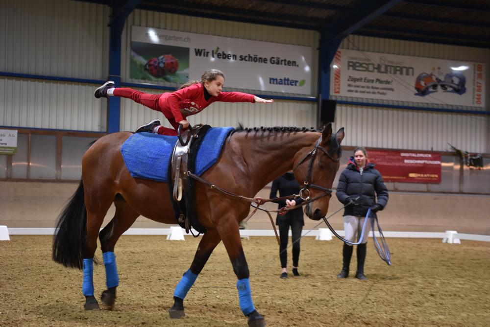 Voltige_Pferdesportstall_Sigg_