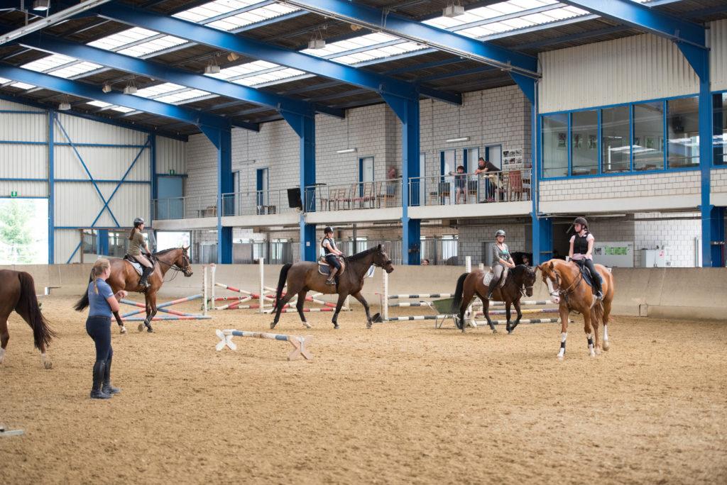 klassenreitstunden_pferdesportstall_sigg