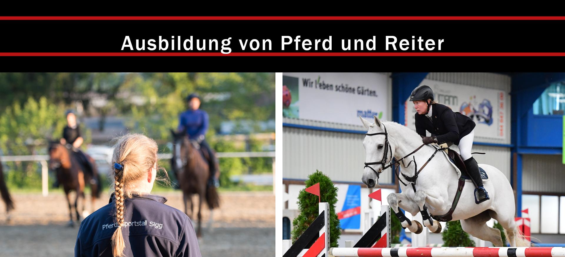 Ausbildung-von-Pferd-und-Reiter-Yvonne