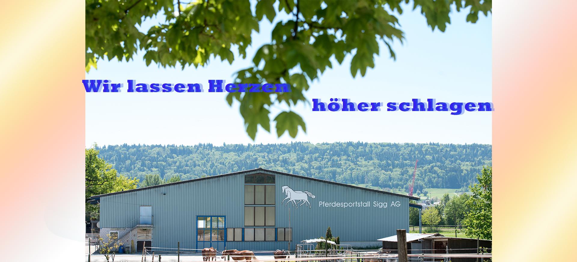 Wir_Lassen_Herzen_hoeher_schlagen-202.